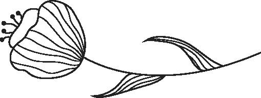 devider bloem (13)