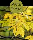 AESPAR22m
