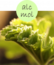 alcmol22m