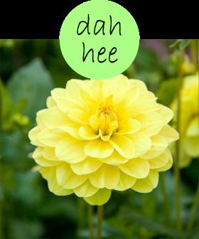dahhee2p