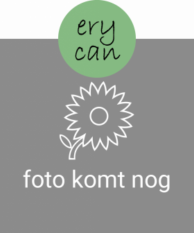erycan112p